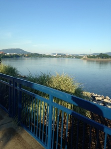 The view from the Riverwalk path